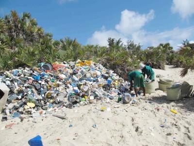Plastics and Wastes