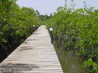 A SUSTAINABLE PATH FOR LARGE-SCALE COASTAL TOURISM IN MEXICO