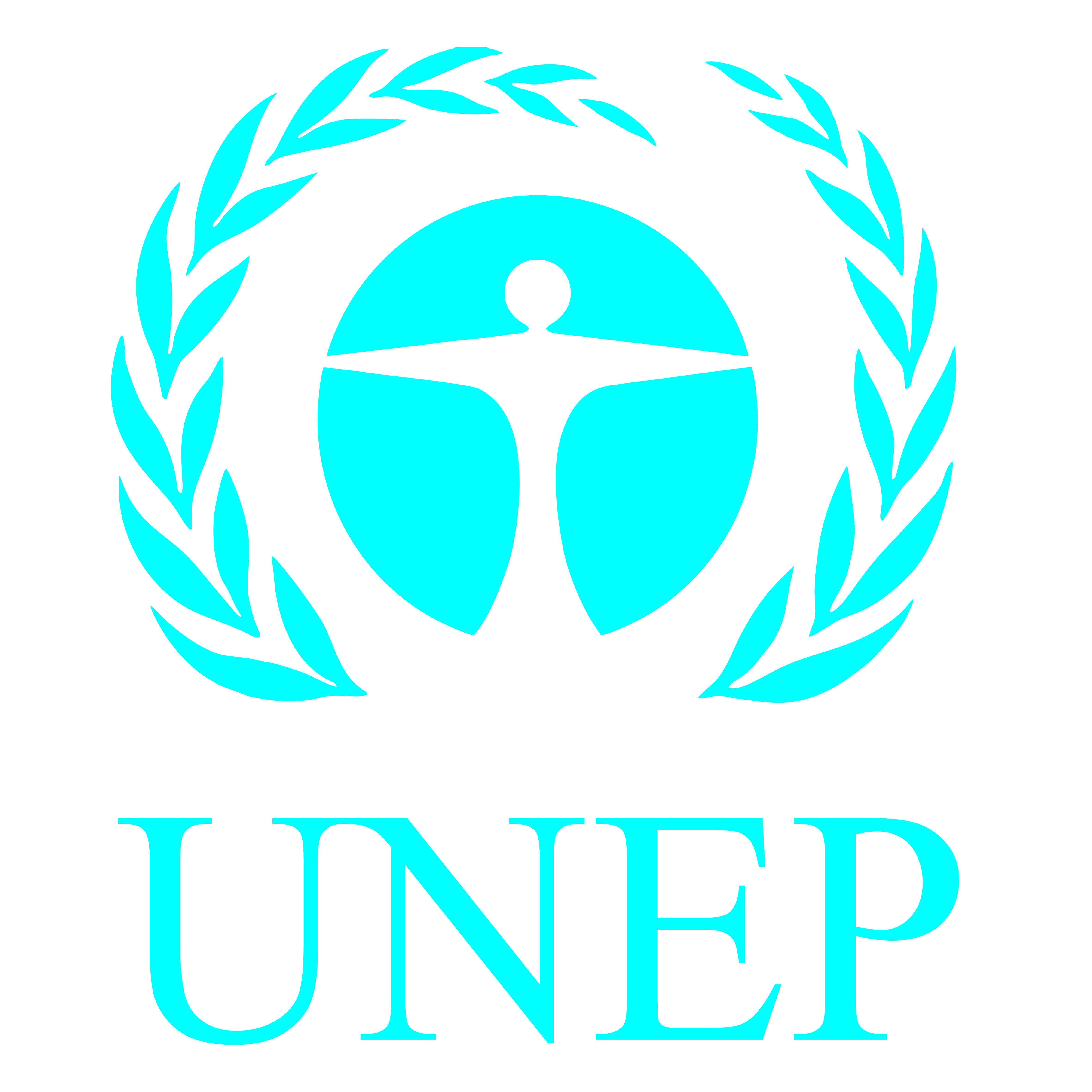 UNEP Strengthened and Upgraded to Implement The Future We Want