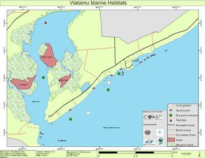 watamu-marine-habitats.jpg