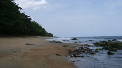 turtle-nesting-beaches-egodje-2.jpg