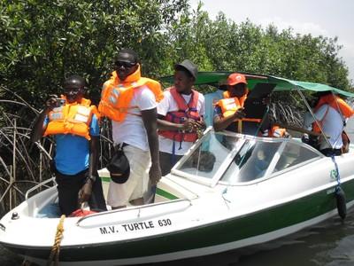 tourist observing mangroves.jpg