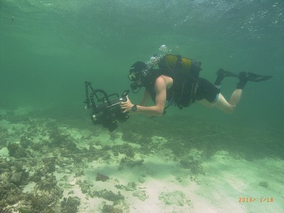 Coral Gardens Video Transect Watamu.jpg