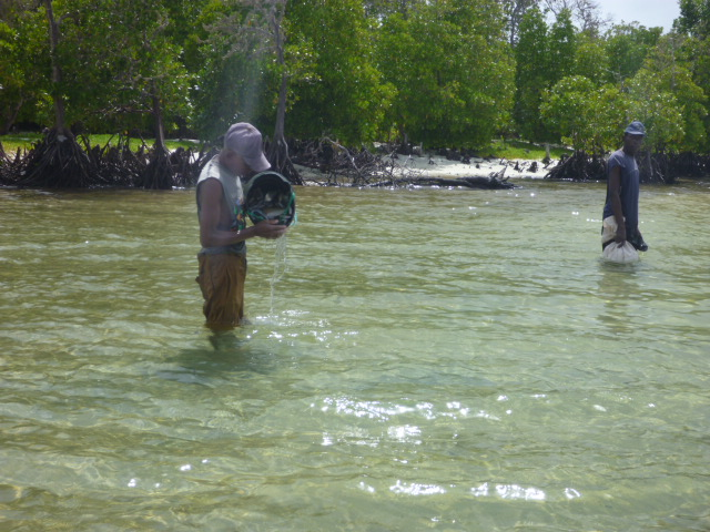 Local fisherman in Watamu.JPG