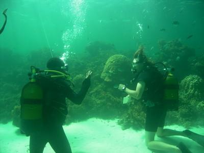 RMRM Reef Assessment.JPG