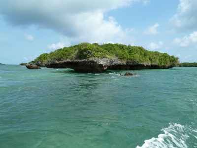 resized-coral-island-for-presentation.jpg