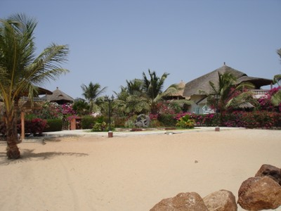 new-investments-in-the-saly-area.jpg