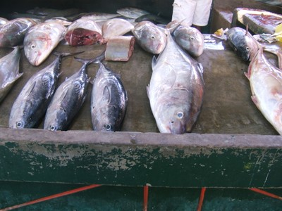 local-fish-market-mahe.jpg