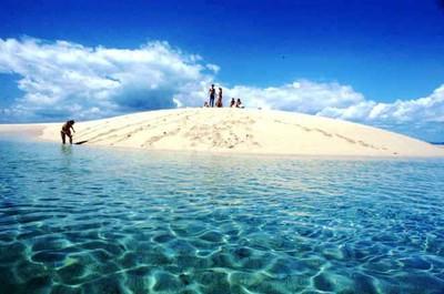 Bag-Reef1.jpg