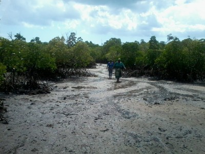 One of the Mangroves officer with a local leader of mangroves group at the of the identified area.jpg