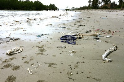 Solid waste pollution washed onto the shore photo 2.jpg