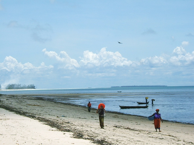lack-of-immediate-access-means-the-island-is-unlikely-to-attract-mass-tourism-but-rather-higher-end-tourism.jpg
